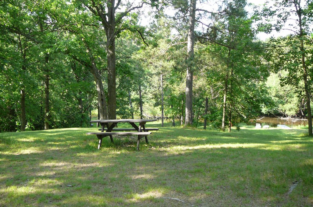 Picnic Area on the Fish Hook River